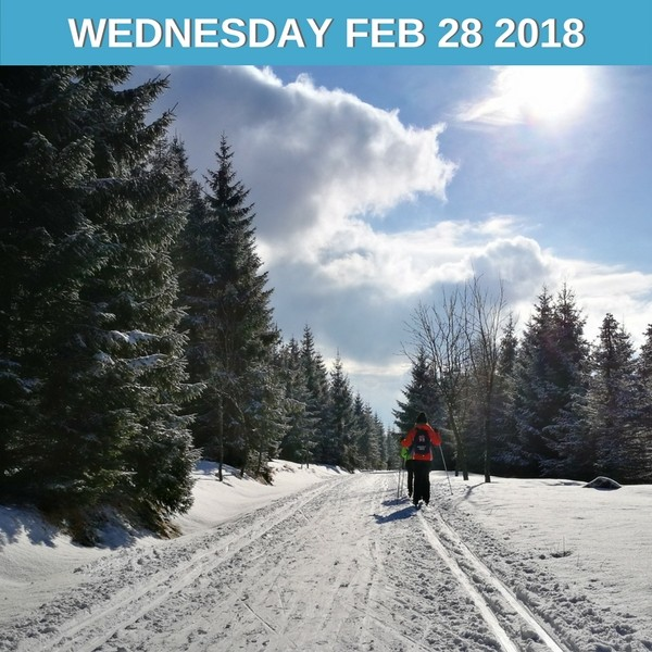Let's go cross-country skiing!